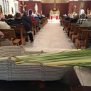 Palm Sunday 2016 photo album thumbnail 1